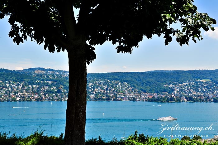 The view onto Lake Zurich from across the road